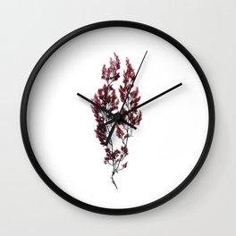 British Sea Weed Wall Clock