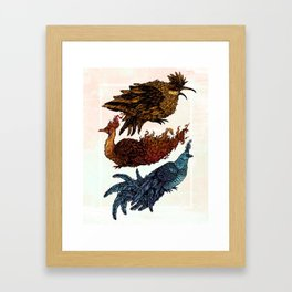 Legendary Birds Framed Art Print