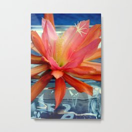 The Water Lily Cactus Metal Print