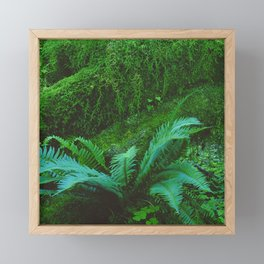 Mystical Green Fern Leaves in the Enchanted Forest Framed Mini Art Print