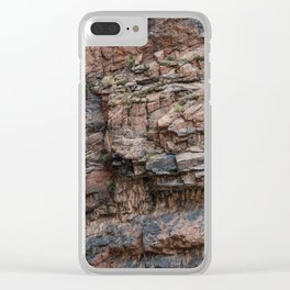 Royal Gorge Rock Formation Texture Clear iPhone Case