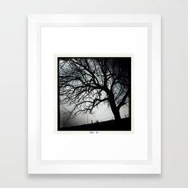 Roma, Tx  Framed Art Print