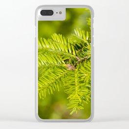 Green coniferous fresh shoots detail Clear iPhone Case