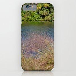 Beautiful purple grass along the Okeechobee waterway iPhone Case