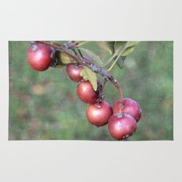 Crabapples into the wild Rug