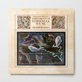 Hevelius Pisces Metal Print