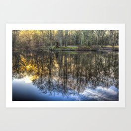 A Pond Of Refections Art Print