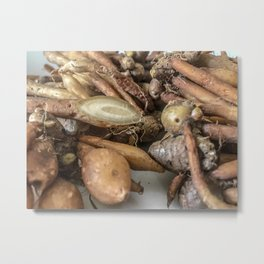 Close up shot of Finger-roots with one cut open on white background. Metal Print