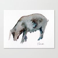 pig Canvas Prints featuring Pig by Elena Sandovici