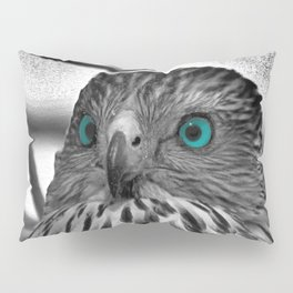 Black and White Hawk with Aqua Blue Eye A165 Pillow Sham