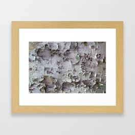 Ancient ceilings textures 132a Framed Art Print