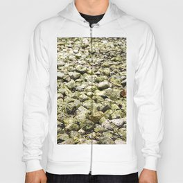 The road to succes is a rocky road Hoody