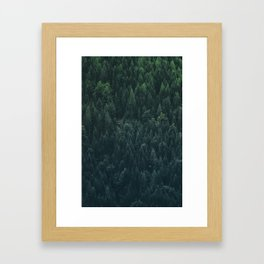 A very dense location of the mountain forest on the alpine altitude Framed Art Print