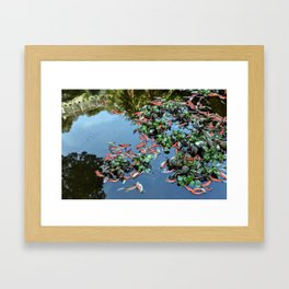 Pond #2 Framed Art Print