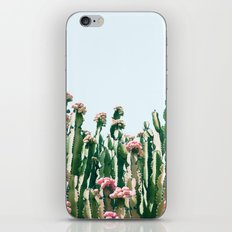 Blush Cactus #society6 #decor #buyart iPhone & iPod Skin