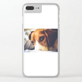Finn Clear iPhone Case