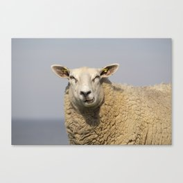 Lamb shank? The times are long gone ... Canvas Print
