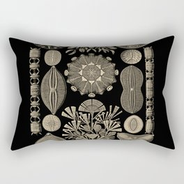 """""""Diatomea"""" from """"Art Forms of Nature"""" by Ernst Haeckel Rectangular Pillow"""