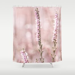 Closeup of soft coloured pink heather with a nice light pink bokeh. Blooming nature. Shower Curtain