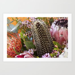 Banksia and Protea blooms Art Print