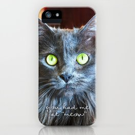 Fluffy grey cat close-up | You had me at meow iPhone Case