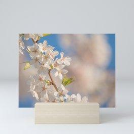 Hope Spring Cherry Blossoms against Blue Sky Mini Art Print