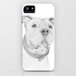 A Pit Bull :: Misunderstood iPhone Case