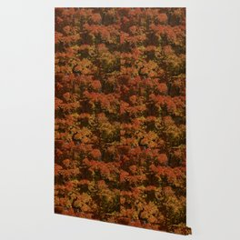 Autumn in Canada Wallpaper