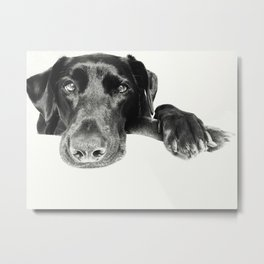 Crossed Paws Metal Print
