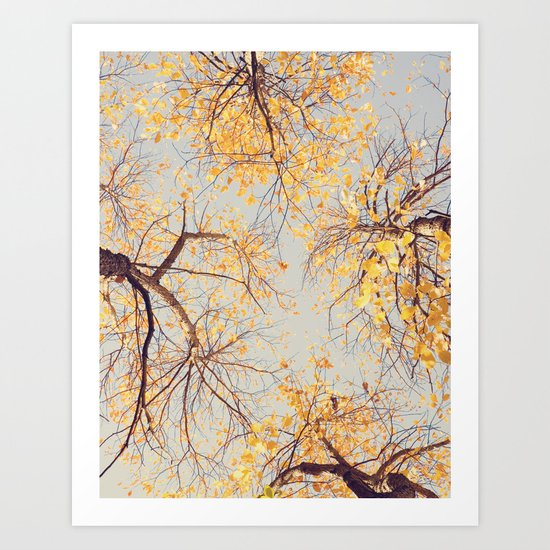 Autumn Sky Art Print