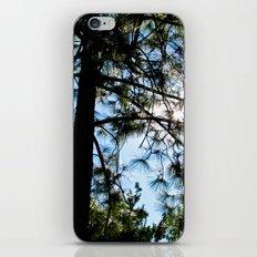 Sunny Day iPhone & iPod Skin
