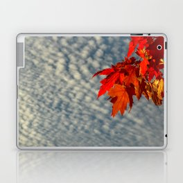 Evening Sky in The Fall by Teresa Thompson Laptop & iPad Skin