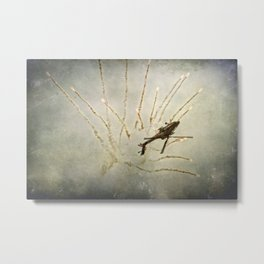 Apache Launch Metal Print