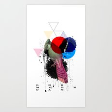 bird colours Art Print