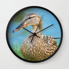 Lady Mallard Wall Clock