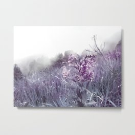 PINKY WILD FLOWER IN THE MOUNTAIN Metal Print