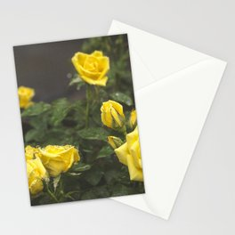 Sunshine Shower Stationery Cards