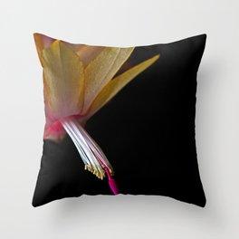 Yellow Christmas Cactus (Schlumbergera) Throw Pillow