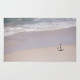 Lone African Penguin on Cape Town beach Rug