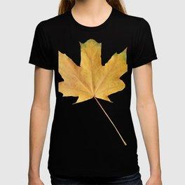 Large wedge yellow leaf T-shirt