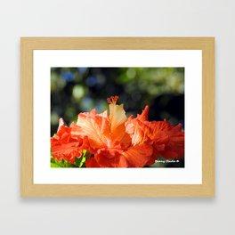 Flamingo Hibiscus Framed Art Print