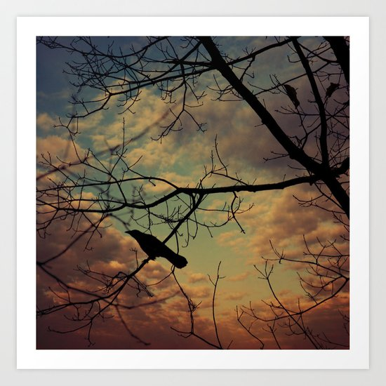 melancholy crow Art Print