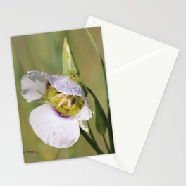 Lily Dew Stationery Cards