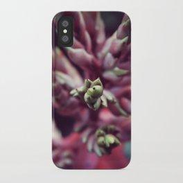 Sarasota iPhone Case