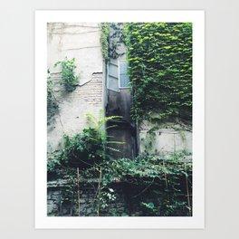 Garden Windows Art Print