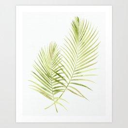 Tropical Flora Art Print