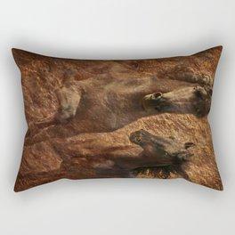 The Spirit of Black Sterling Rectangular Pillow