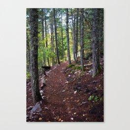 The Revelstoke Trail I Canvas Print