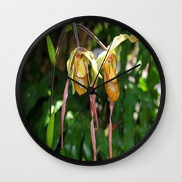 Lady Slipper Orchid I Wall Clock