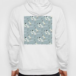 Seagull clones Hoody